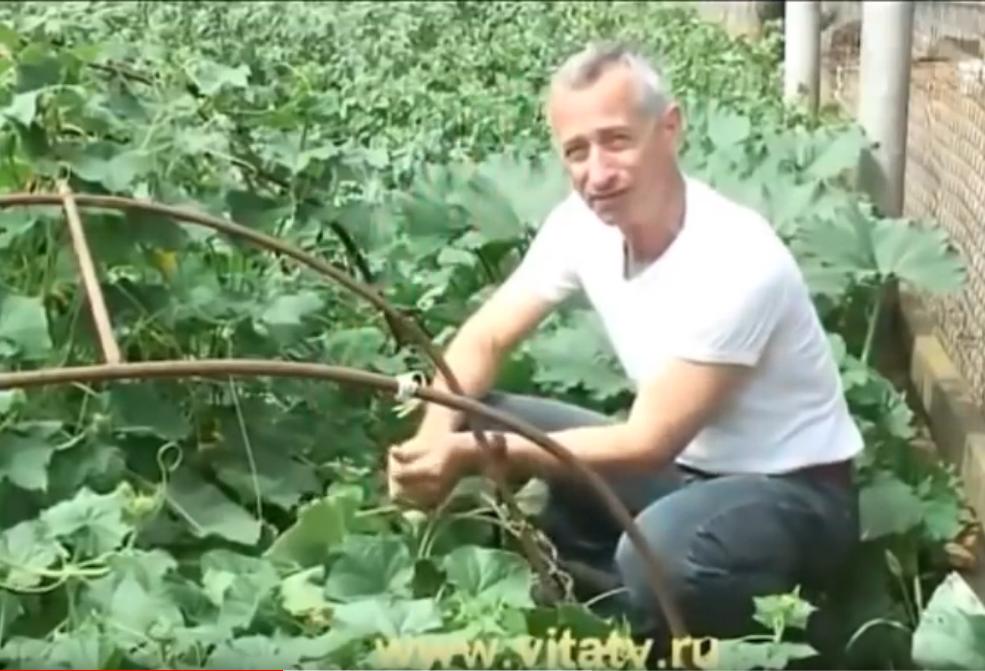 Доктор петр Попов