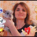 Елена Гагосова (Белова): биография блогерши и автора каналов «Vredina Life» и «Хомки»